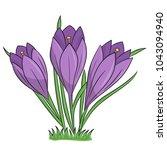 spring flowers   crocuses. hand ... | Shutterstock .eps vector #1043094940