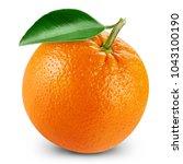 orange fruits with leaf...   Shutterstock . vector #1043100190