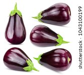 eggplant collection isolated on ... | Shutterstock . vector #1043100199