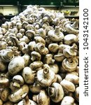 raw organic white mushrooms | Shutterstock . vector #1043142100