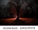 strange light in a dark forest... | Shutterstock . vector #1043159578
