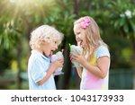 kids eating ice cream on hot... | Shutterstock . vector #1043173933