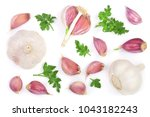 garlic with parsley leaves... | Shutterstock . vector #1043182243