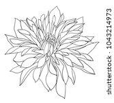 beautiful monochrome sketch ...   Shutterstock .eps vector #1043214973