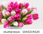 pink tulip on the white... | Shutterstock . vector #1043219620