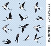 simple swallows on a light blue ... | Shutterstock .eps vector #1043241133