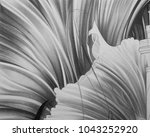 abstract black and white waves  ... | Shutterstock . vector #1043252920