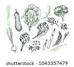 hand drawn doodle green food | Shutterstock .eps vector #1043357479