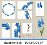 muscari set with visitcards and ... | Shutterstock .eps vector #1043400169