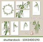 snowdrop set with visitcards... | Shutterstock .eps vector #1043400190