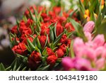 beautiful bouquet of bright and ... | Shutterstock . vector #1043419180