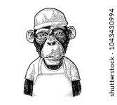 monkeys fast food worker... | Shutterstock .eps vector #1043430994