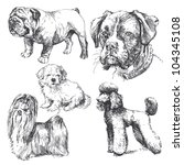 Dogs   Hand Drawn Set