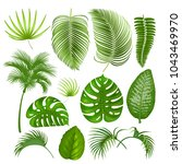 summer tropical exotic leaves... | Shutterstock .eps vector #1043469970