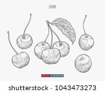 hand drawn cherry isolated.... | Shutterstock .eps vector #1043473273