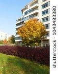 modern urban floristics of... | Shutterstock . vector #1043483380