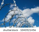 Barbed Wire And Concertina Wire