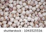 garlic huge pile of perfect... | Shutterstock . vector #1043525536