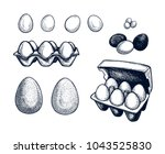 eggs set hand drawn isolated... | Shutterstock .eps vector #1043525830