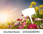 empty tag and flowers in garden | Shutterstock . vector #1043608090