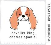 Cavalier King Charles Spaniel ...