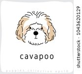 cavapoo   dog breed collection  ... | Shutterstock .eps vector #1043620129