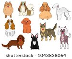 group of small dogs hand drawn | Shutterstock .eps vector #1043838064