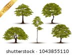 collection  beautiful tree... | Shutterstock .eps vector #1043855110