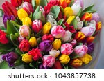 mix of spring tulips flowers... | Shutterstock . vector #1043857738