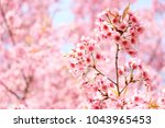 spring border abstract blured... | Shutterstock . vector #1043965453