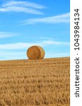 Small photo of A haybale on the brow of a hill in the Sussex Downs