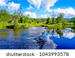 summer nature rural river... | Shutterstock . vector #1043993578