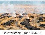 fire burning on the field ... | Shutterstock . vector #1044083338