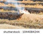 fire burning on the field ... | Shutterstock . vector #1044084244