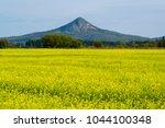 oilseed rape field  | Shutterstock . vector #1044100348