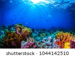 underwater world panorama.... | Shutterstock . vector #1044142510