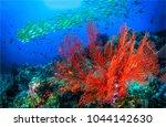 underwater life landscape | Shutterstock . vector #1044142630