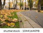 autumn leaves on the pedestrian ...   Shutterstock . vector #1044164098