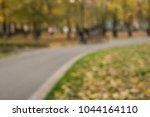 autumn leaves on the pedestrian ...   Shutterstock . vector #1044164110