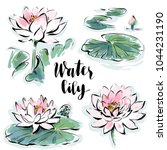 water lily flowers isolated... | Shutterstock .eps vector #1044231190