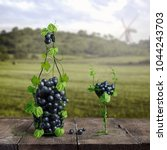 Grapes One Glass Wine Vineyard - Fine Art prints