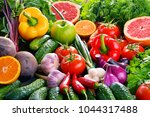 composition with variety of... | Shutterstock . vector #1044317488
