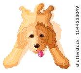 goldendoodle or labradoodle dog ...   Shutterstock .eps vector #1044333049