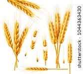 realistic bunch of wheat  oats... | Shutterstock .eps vector #1044363430