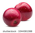 red apples with water drops... | Shutterstock . vector #1044381388