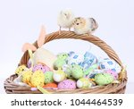 cute little chicks and easter... | Shutterstock . vector #1044464539