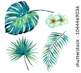 beautiful tropical palm leaves... | Shutterstock . vector #1044469036