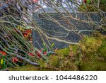 timisoara  romania   april 28... | Shutterstock . vector #1044486220
