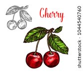 cherry fruit sketch icon.... | Shutterstock .eps vector #1044540760
