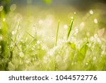 nature background with drops of ... | Shutterstock . vector #1044572776